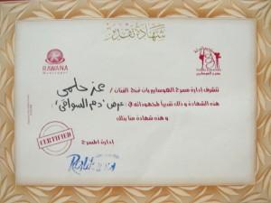 شهادة تقدير عن عرض دم السواقي الفائز في مهرجان المسرح المصري سنة 2012